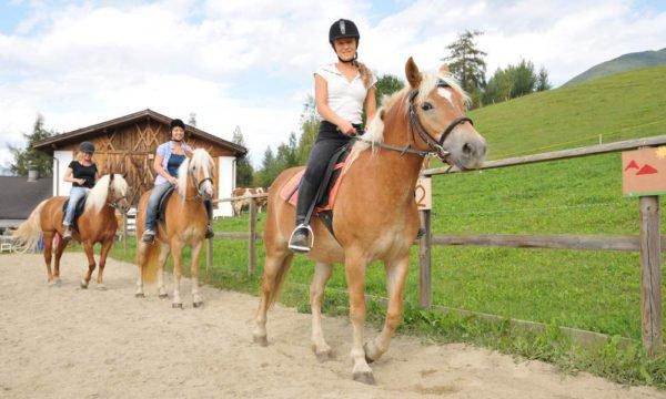 Reiterferien für Jung und alt